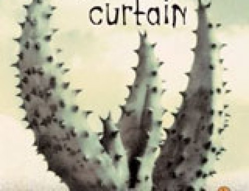 Tortilla Curtain